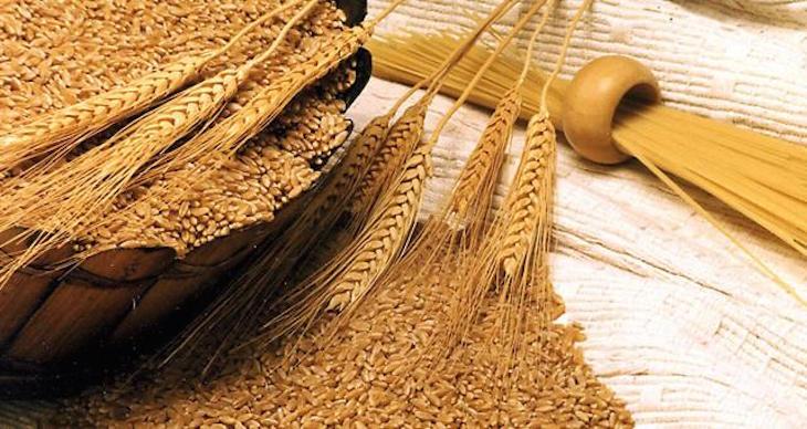 وزارة الفلاحة ترفع قيمة الرسوم الجمركية على القمح المستورد لحماية المحصول الوطني