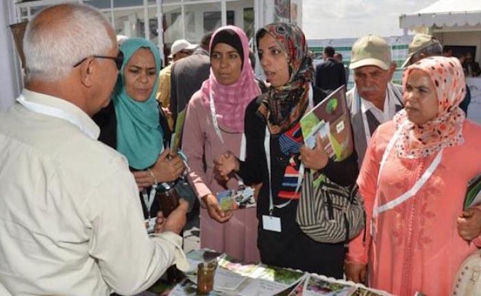 إحداث قافلة القرية المتنقلة للاستشارة الفلاحية لضمان تنمية مستدامة للقطاع
