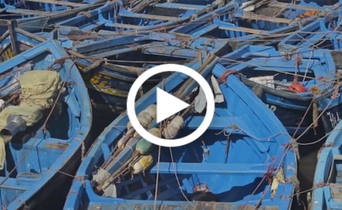 سائح هولندي يوثق بالفيديو أجمل المناطق بالمغرب