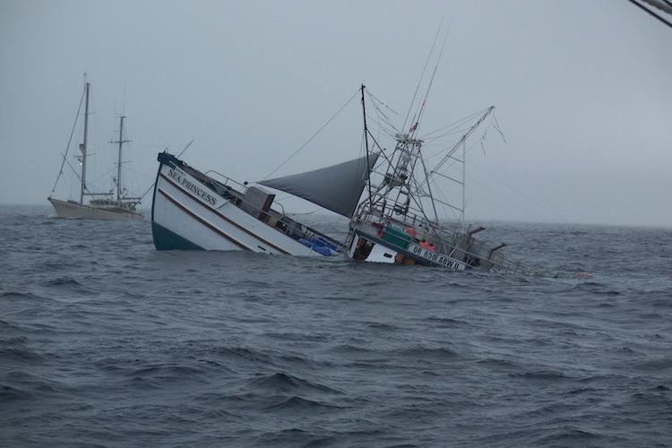 الداخلية والفلاحة تحددان مكان السفينة التي غرقت قرب سواحل الداخلة ببحارتها