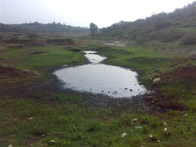 كارثة بيئية بآسفي.. «دايو» تفرغ مراحيض المحطة الحرارية فوق أراض فلاحية