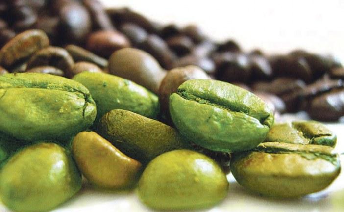 حمية حبوب القهوة الخضراء 