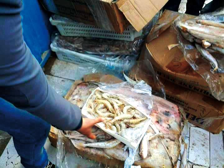 حجز 10 أطنان من الأسماك الفاسدة بآسفي تفوق قيمتها 100 مليون سنتيم