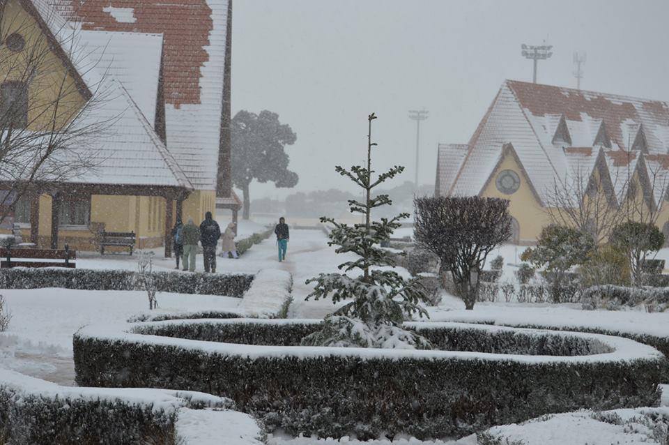 جامعة الأخوين تتحول إلى مأوى للمحاصرين بثلوج إفران