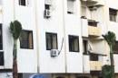 سلطات طنجة تتراجع عن زرع نخيل يسهل مأمورية اللصوص للصعود للعمارات السكنية