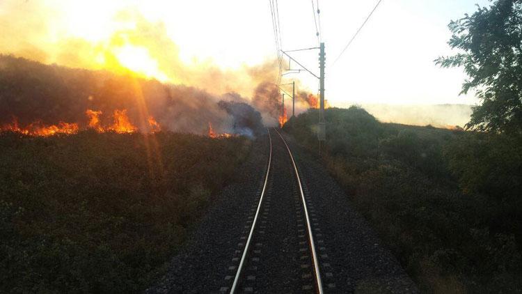 حريق في غابة سيدي اليماني يوقف حركة القطارات بالشمال
