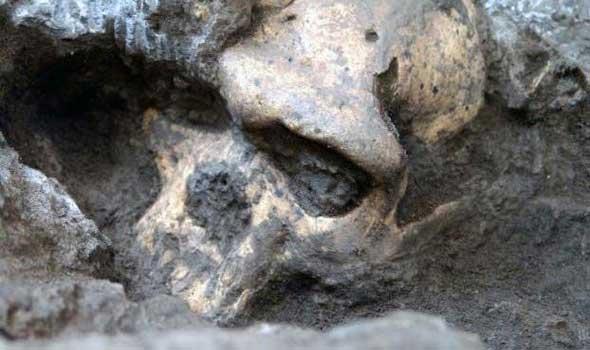 العثور على جمجمة وعظام بشرية بمخيم صيفي في المهدية