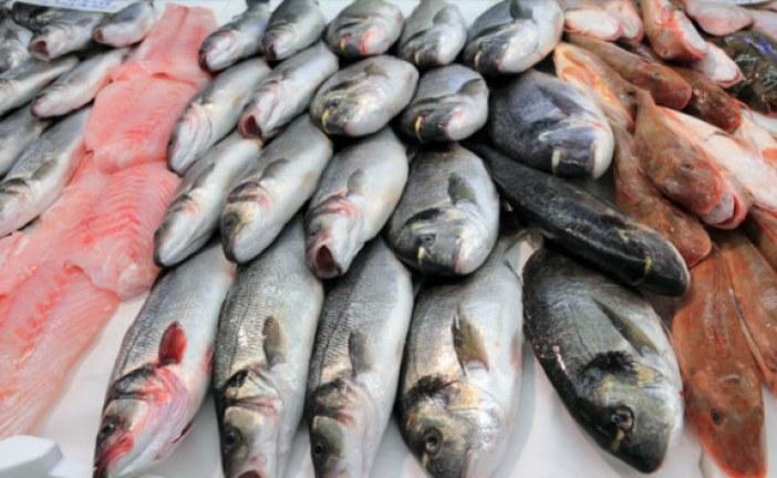 انخفاض ملحوظ في ثمن الأسماك بالحسيمة بسبب التحقيق في وفاة محسن