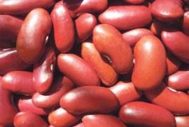 الفاصوليا الحمراء لتقوية الكبد وتنشيط دقات القلب