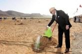 إتلاف 500 هكتار من أشجار التين بآسفي بعد 4 سنوات على التدشين الملكي للمشروع