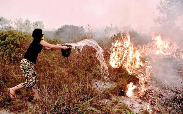 الحرائق تحاصر مدينة طنجة وتصل إلى مناطق حساسة