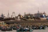انتعاش ميناء طانطان بعد ترخيص وزارة أخنوش لـ50 مركبا بإفراغ حمولتها