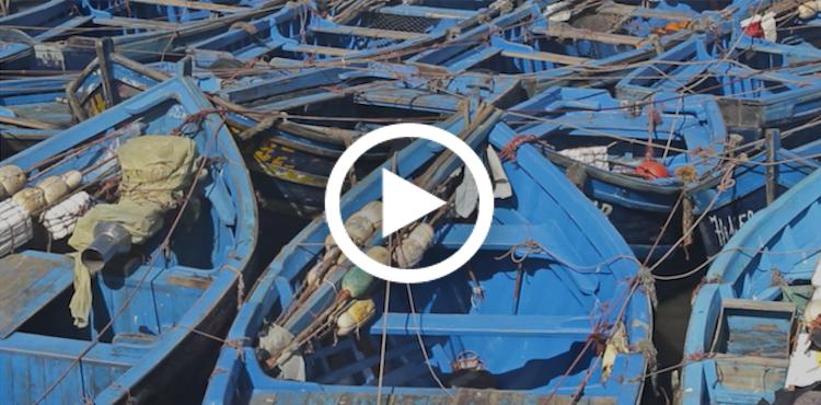 صورة سائح هولندي يوثق بالفيديو أجمل المناطق بالمغرب