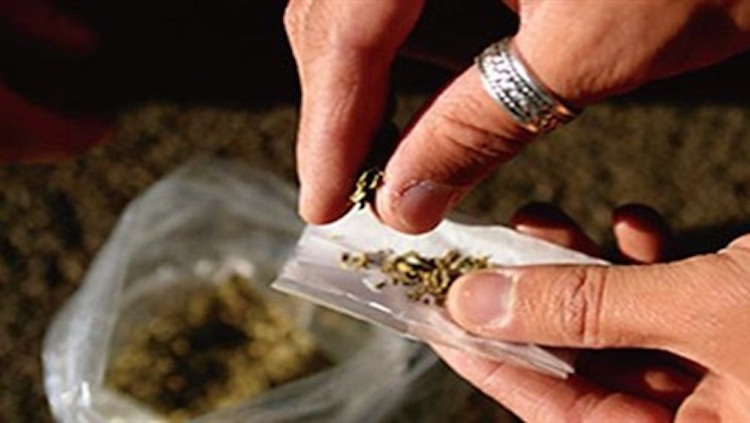 إحباط تسريب مخدرات وسط نعناع إلى سجن الخميسات
