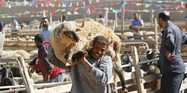4,7 في المائة من الأسر المغربية الغنية لا تذبح أضحية العيد