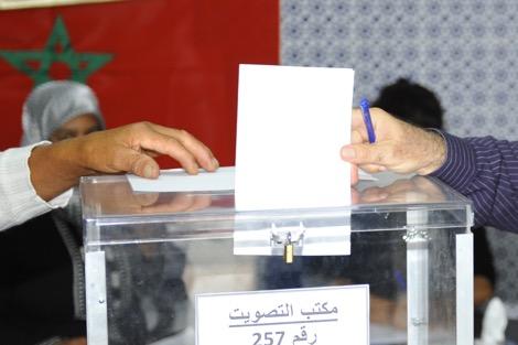 الخارجية الفرنسية : انتخابات 7 أكتوبر تعكس الحيوية الديمقراطية للمغرب