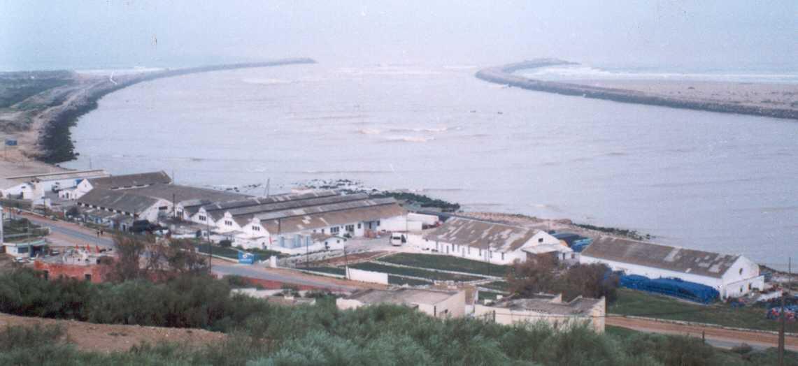إغلاق خمس وحدات صناعية في قطاع الصيد البحري بالقنيطرة