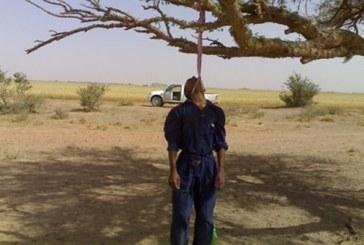 أخرج جثة والده من منزل الأسرة نواحي تازة وعلقها فوق شجرة زيتون لإيهام الدرك بأنه انتحر