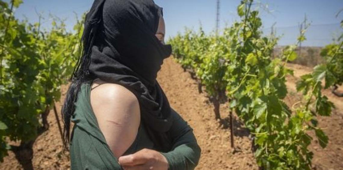صورة العاملات المغربيات بحقول «الفريز»…اعتقال متهم بالاعتداء الجنسي عليهن ويتيم يرفض المثول أمام البرلمان
