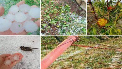 صورة عاصفة تتسبب في تضرر 9100 هكتار من المحاصيل الزراعية بجهة فاس-مكناس
