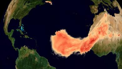 صورة فيديو … غودزيلا يستعد للهجوم على أمريكا