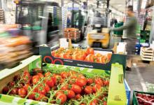 صورة ارتفاع قيمة صادرات المنتجات الغذائية الفلاحية سنة 2019 بنسبة 8 بالمائة